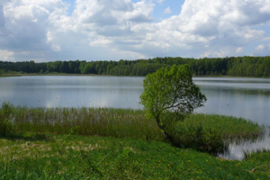 """Под природный парк -""""Виштынецкий-"""" планируется выделить 24 тыс- га земли - Новости Калининграда"""
