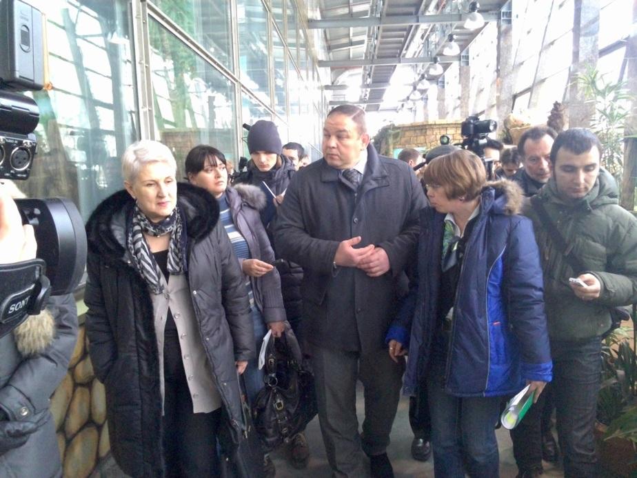 Обезьянник проверит на прочность 20-летний орангутан Кайян - Новости Калининграда
