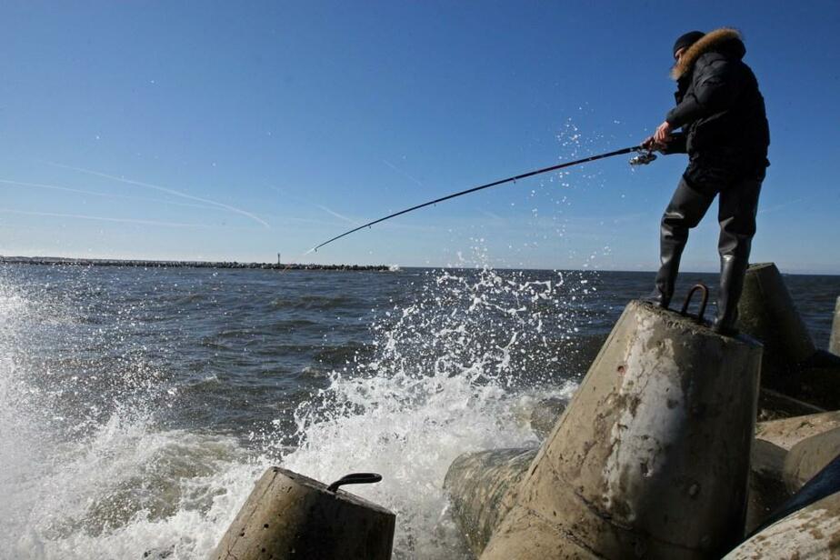 На водоемах Калининградской области начал действовать запрет на рыбалку - Новости Калининграда