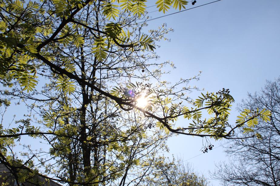 В Калининградской области на этой неделе потеплеет до -25- - Новости Калининграда