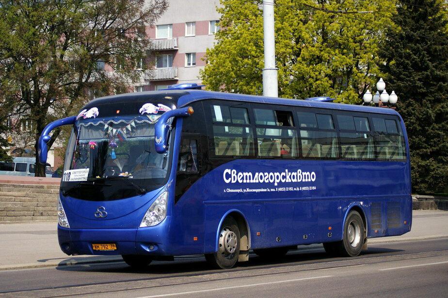 На зеленоградской дороге под колесами рейсового автобуса погиб пешеход - Новости Калининграда