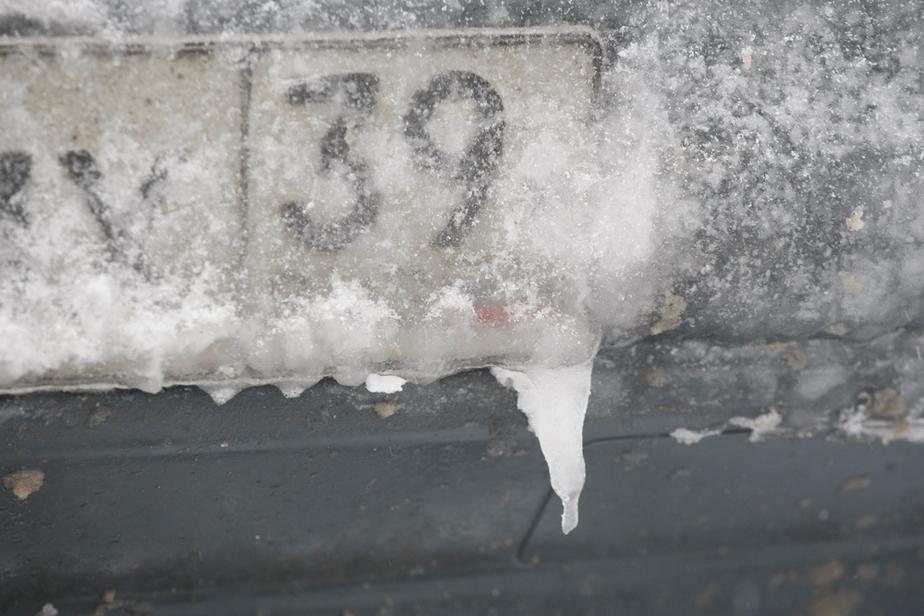 Аномально холодная погода продержится в Калининграде до конца недели - Новости Калининграда