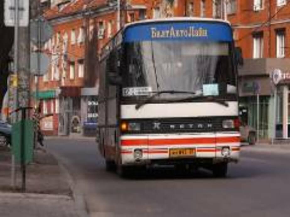 В Калининграде 15 городских автобусов оснастили бесплатным Wi-Fi - Новости Калининграда