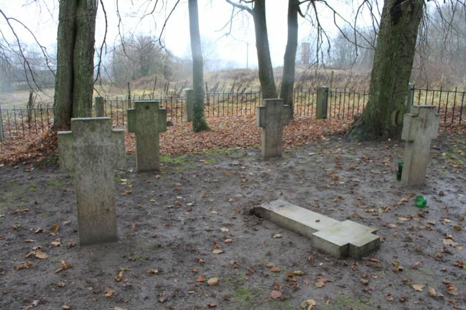 На старом кладбище в Добровольске вандалы устроили крестоповал - Новости Калининграда