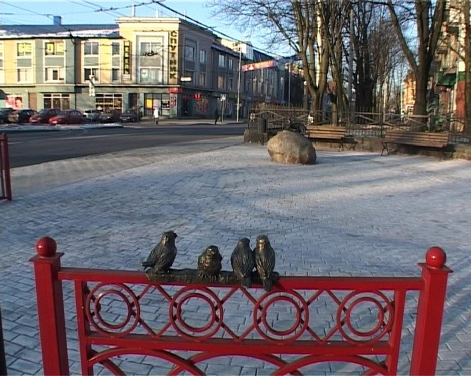 В Калининграде появился новый сквер с котом - Новости Калининграда