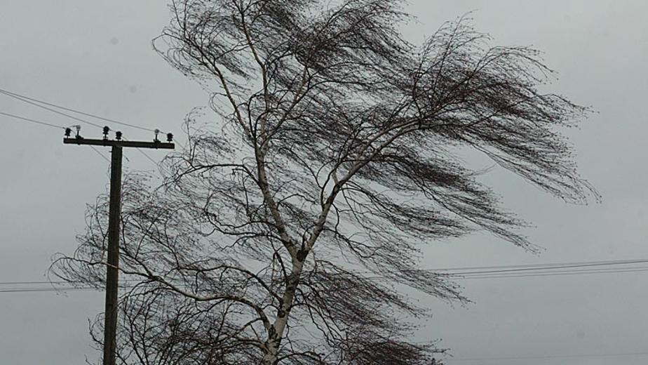 На выходных синоптики ожидают усиление ветра до 27 м-с - Новости Калининграда