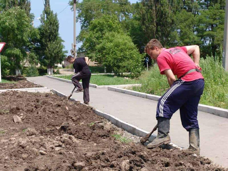 Служба занятости обещает устроить в течение года на работу 1800 подростков - Новости Калининграда