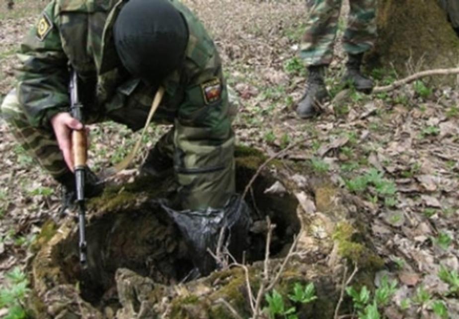 В Светлогорске в парке нашли схрон с боеприпасами - Новости Калининграда