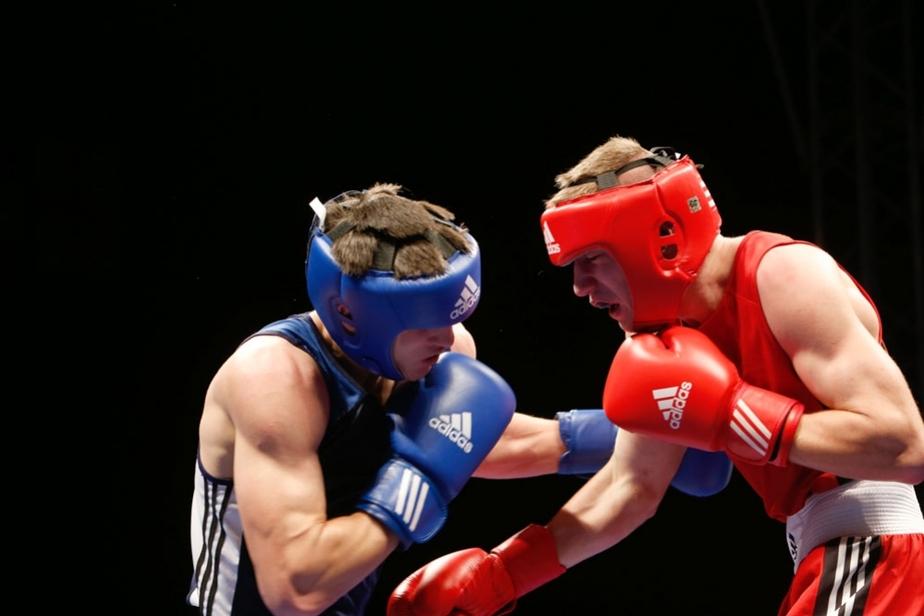 В Калининграде стартовал  молодежный чемпионат Европы по боксу - Новости Калининграда
