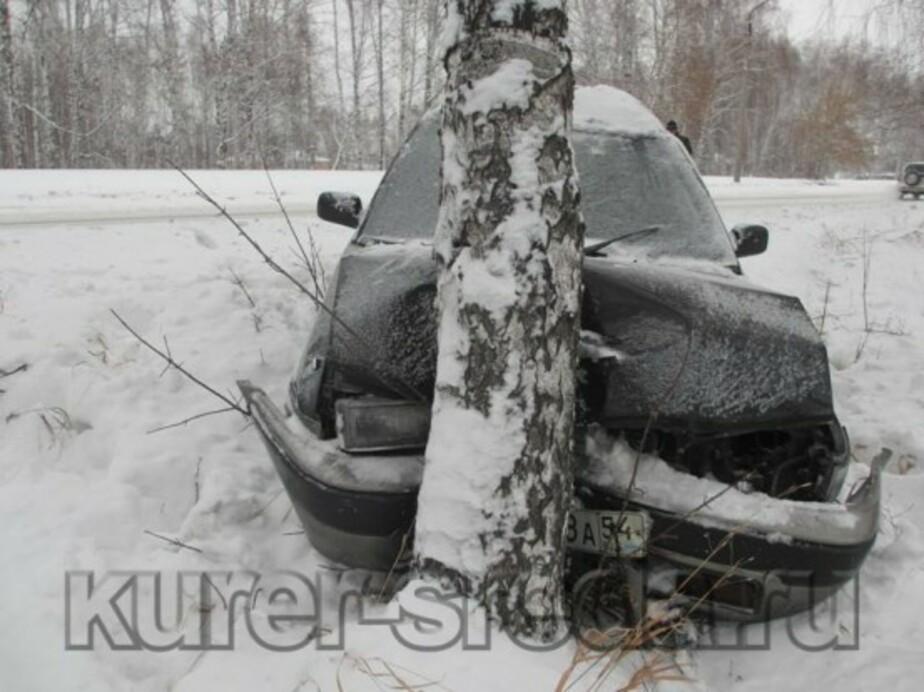 """Калининградец угнал """"Ауди""""- повредил пять автомобилей и врезался в березу - Новости Калининграда"""