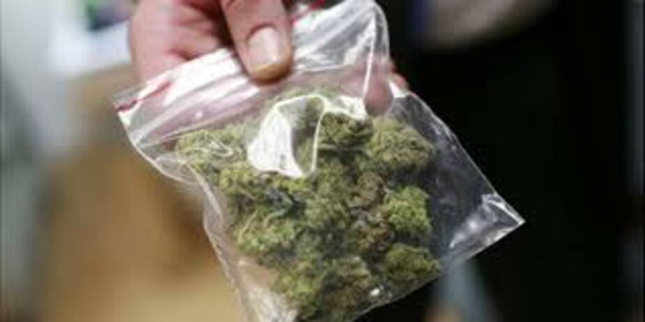 В Калининграде 21-летний парень получил 2-5 года за сбыт марихуаны - Новости Калининграда