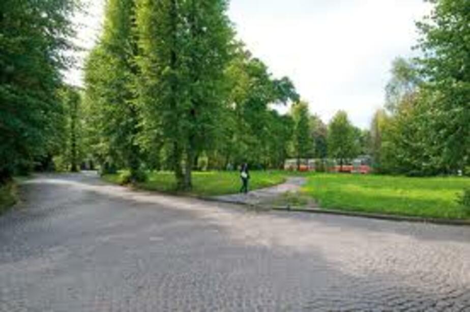 Площадь зеленых зон в Калининграде в 1-5 раза ниже нормативной - Новости Калининграда
