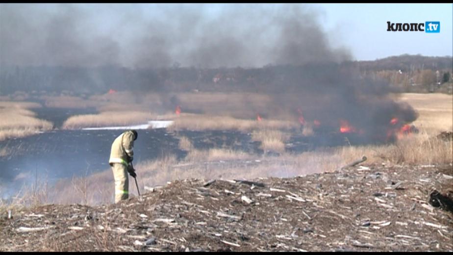 В Калининграде из-за горящей травы чуть не загорелась исправительная колония - Новости Калининграда