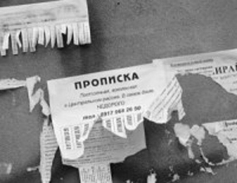 Бывший калининградский милиционер прописал в квартире более 300 человек - Новости Калининграда