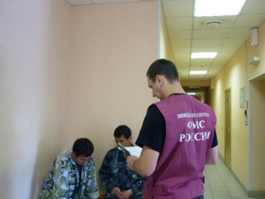 Приставы выдворили из Калининградской области узбека - Новости Калининграда