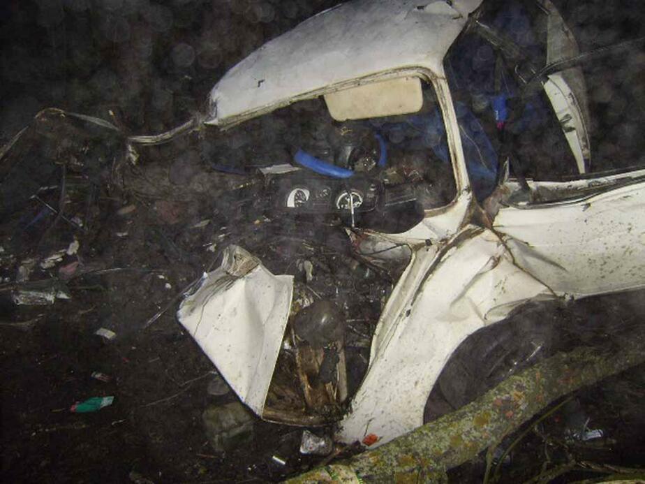 """Под Правдинском -""""Гольф-"""" врезался в дерево- один погиб- двое ранены - Новости Калининграда"""