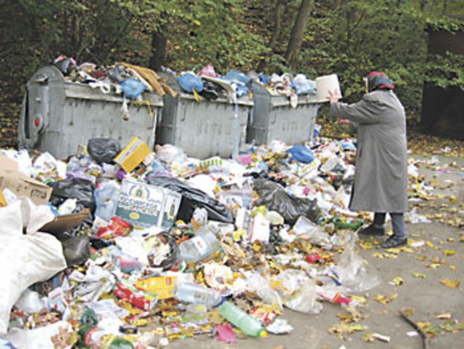 """Из-за забастовки работников \""""Чистоты\"""" в Черняховске 2 недели не вывозили мусор - Новости Калининграда"""