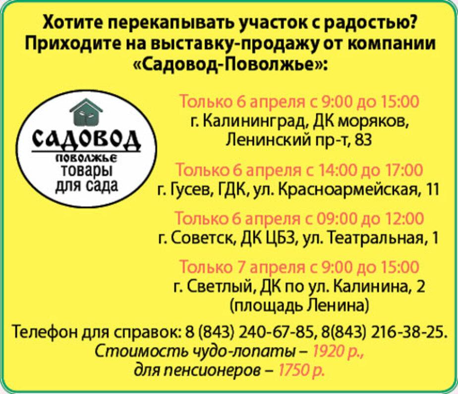 Чудо-инструменты для сада и огорода. Более 300 000 довольных садоводов! - Новости Калининграда