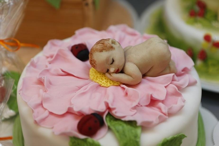 Детский торт от Вестер - на радость Вашим детям- - Новости Калининграда