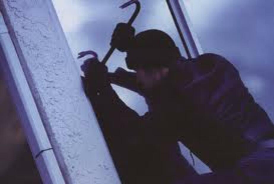 Трое калининградцев за три месяца совершили 17 краж - Новости Калининграда