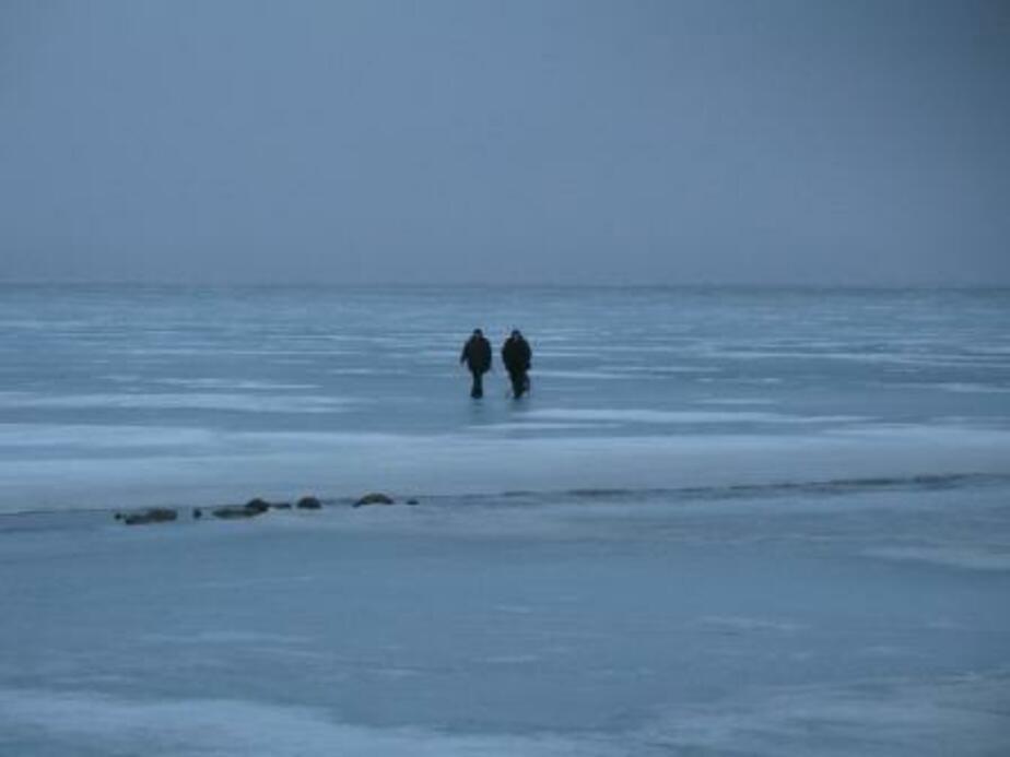Спасатели эвакуировали с льдины в Куршском заливе 70 рыбаков-любителей