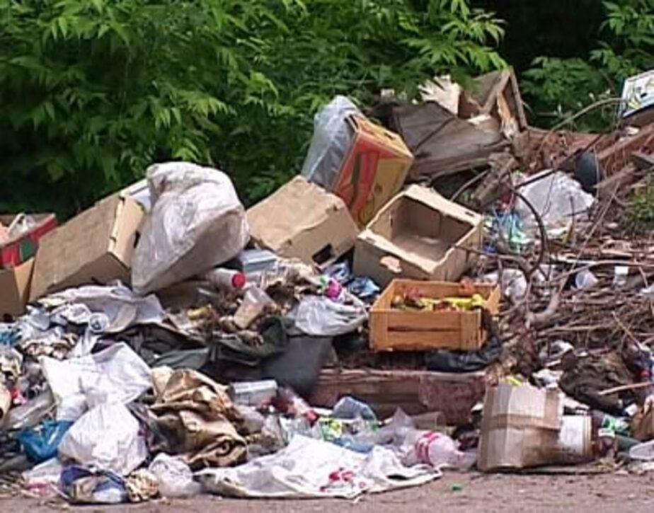 Глава Роспотребнадзора предложила изменить систему уборки мусора в регионе - Новости Калининграда