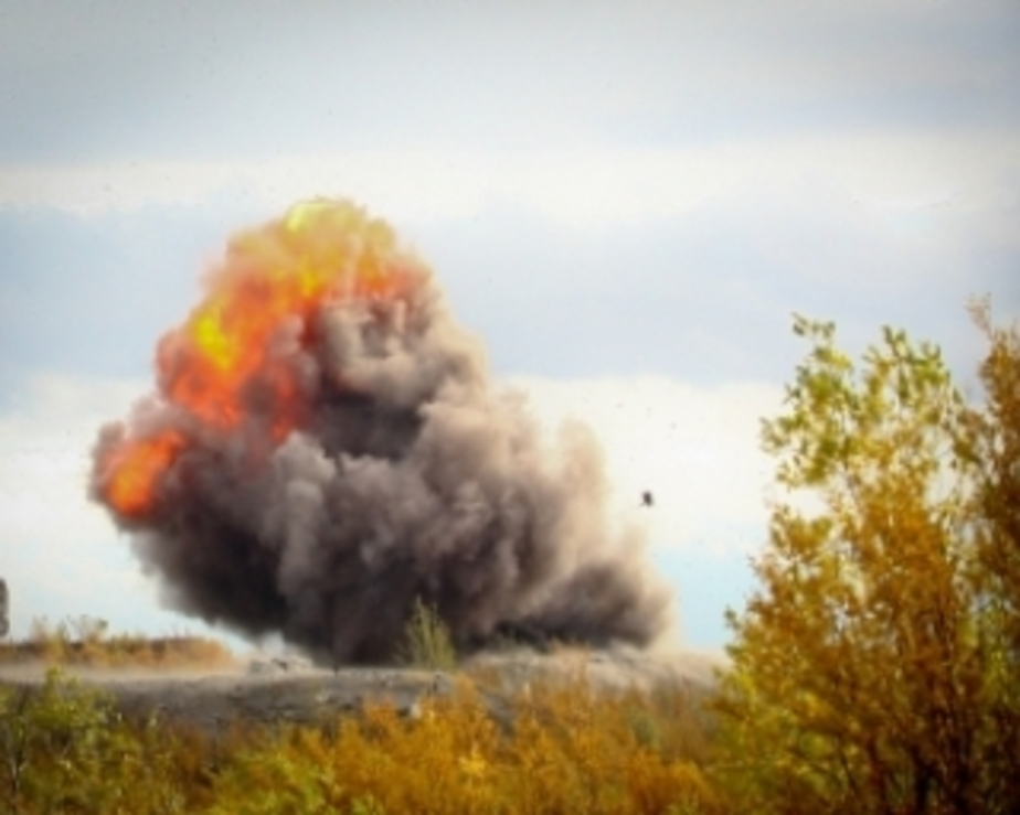 Калининградская полиция уничтожила 4-5 тыс- боеприпасов - Новости Калининграда