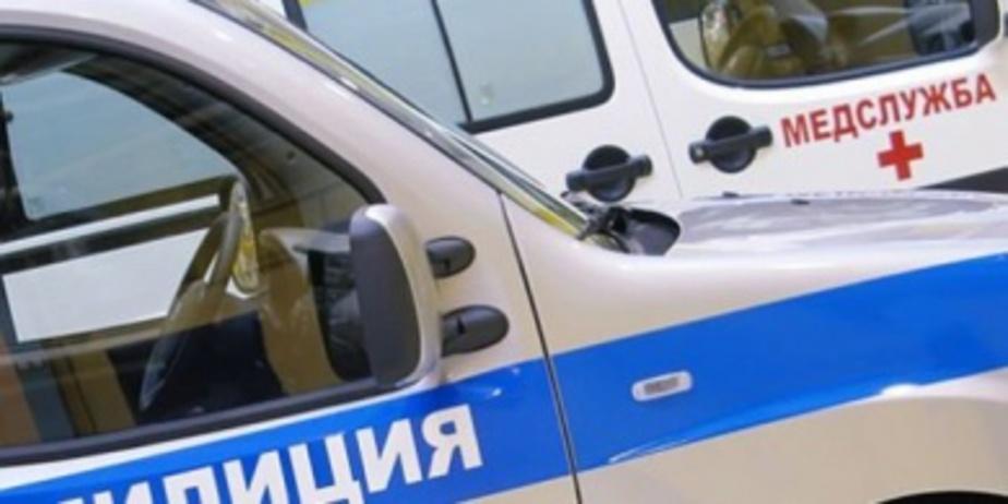 Пьяный калининградец угнал автомобиль и врезался в полицейские машины - Новости Калининграда