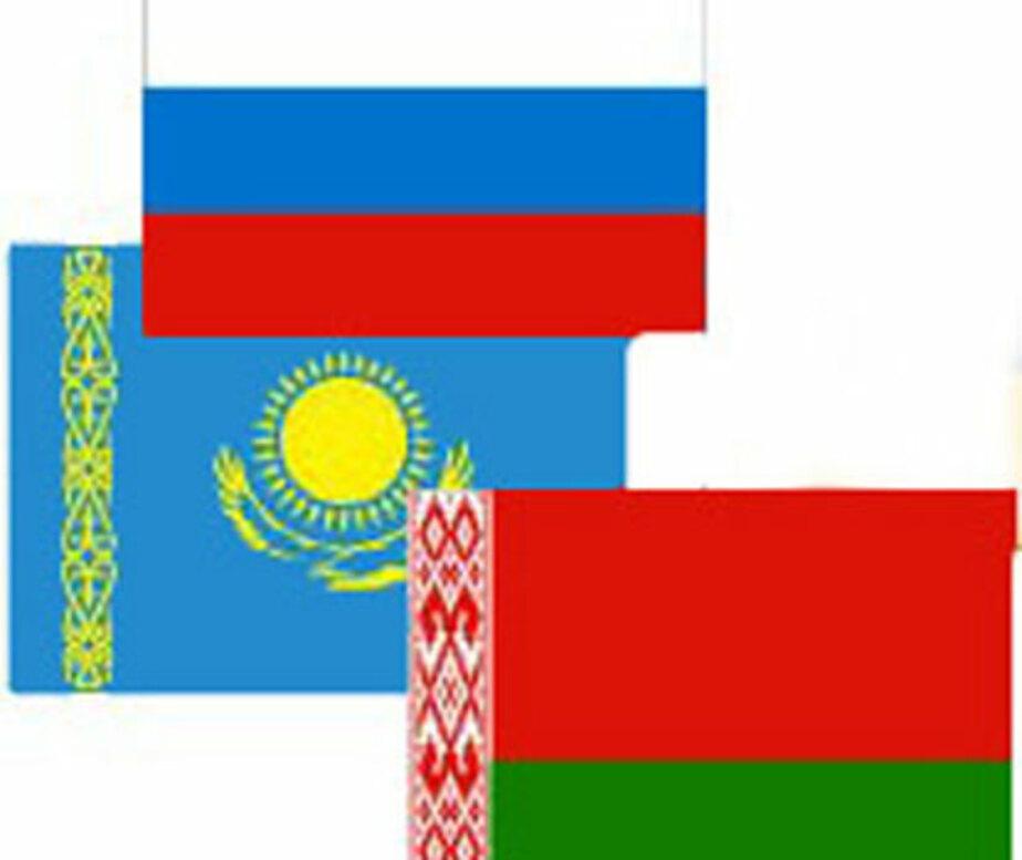 Совет Федерации разрешил беспошлинно ввозить в Таможенный союз товары на 10 тыс- евро - Новости Калининграда