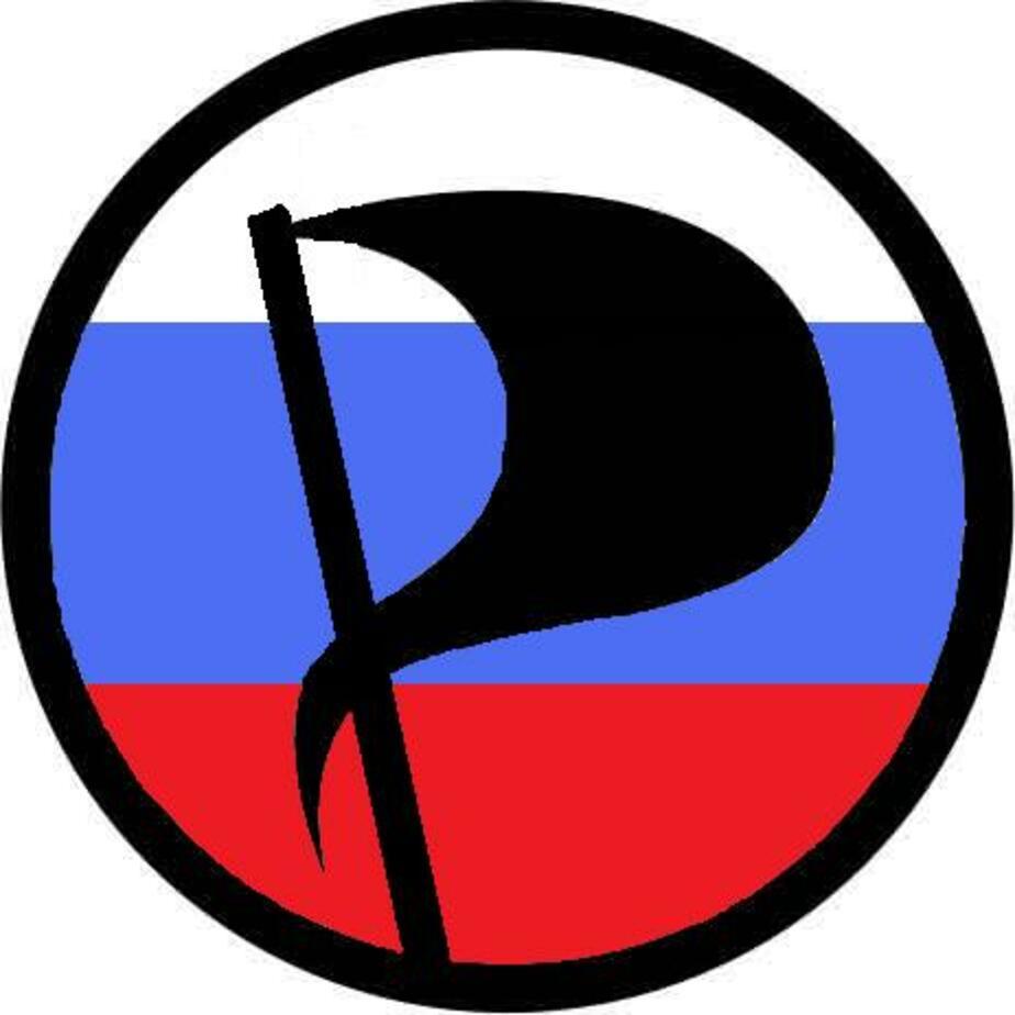 Пиратская партия России выдвинет своего кандидата на пост мэра Калининграда - Новости Калининграда