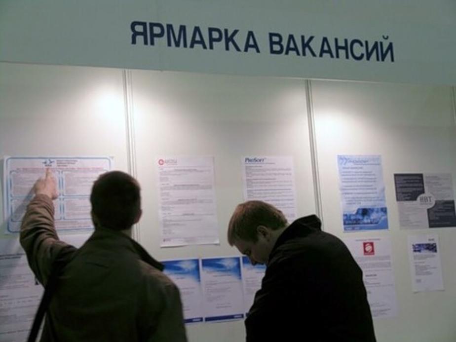 В Калининграде работодатели не объявляют о вакансиях- чтобы привлечь на работу мигрантов - Новости Калининграда