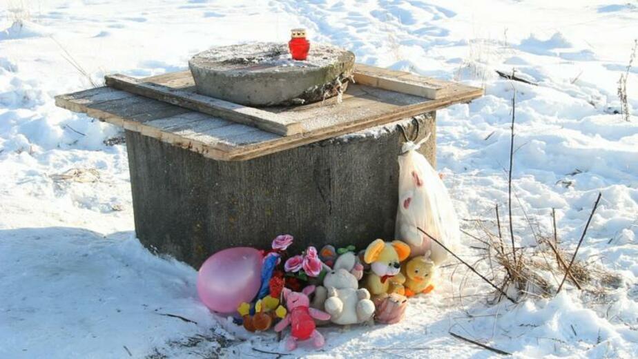 В Черняховском районе 8-летняя девочка утонула в колодце - Новости Калининграда
