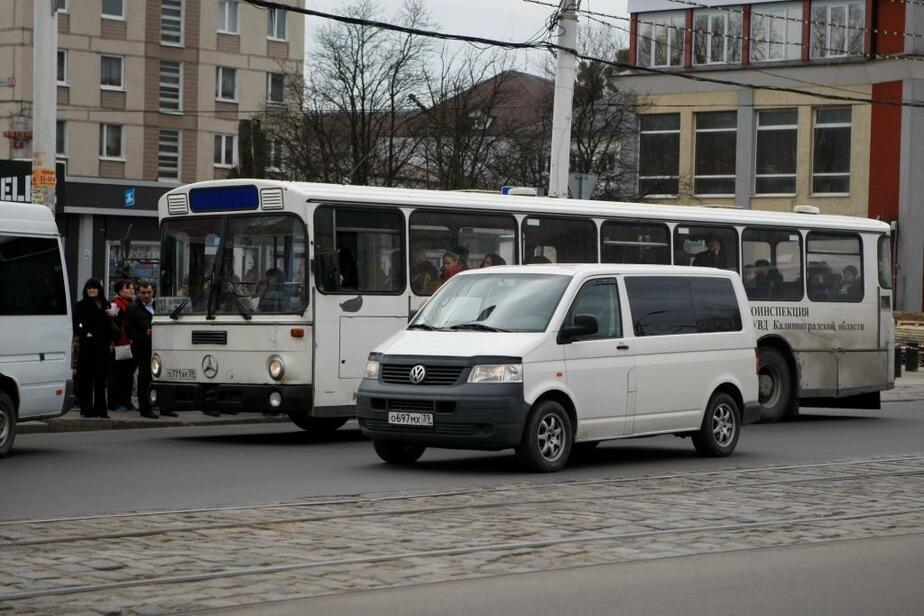 К 2015 году городские перевозчики избавятся от старых автобусов - Новости Калининграда