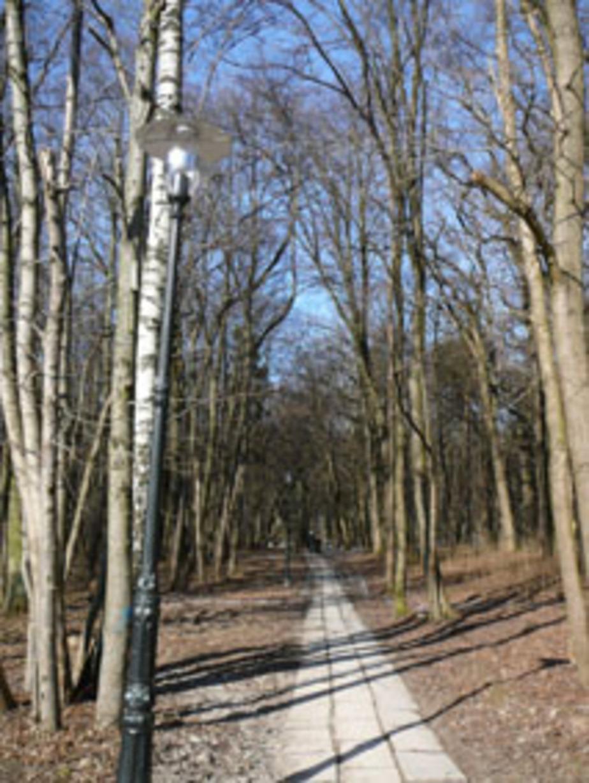 В Гурьевске вандалы разбили 30 новых фонарей в парке - Новости Калининграда