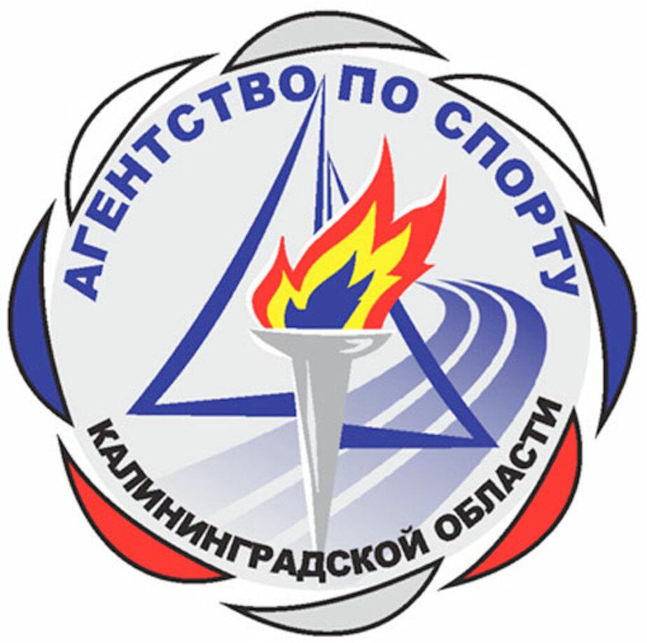 Министра попросили освободить должность - Новости Калининграда