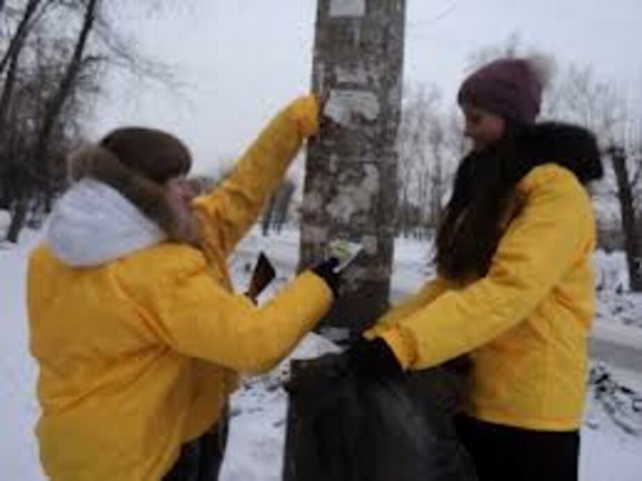 Фасады домов планируют очищать от рекламы за счет жильцов - Новости Калининграда