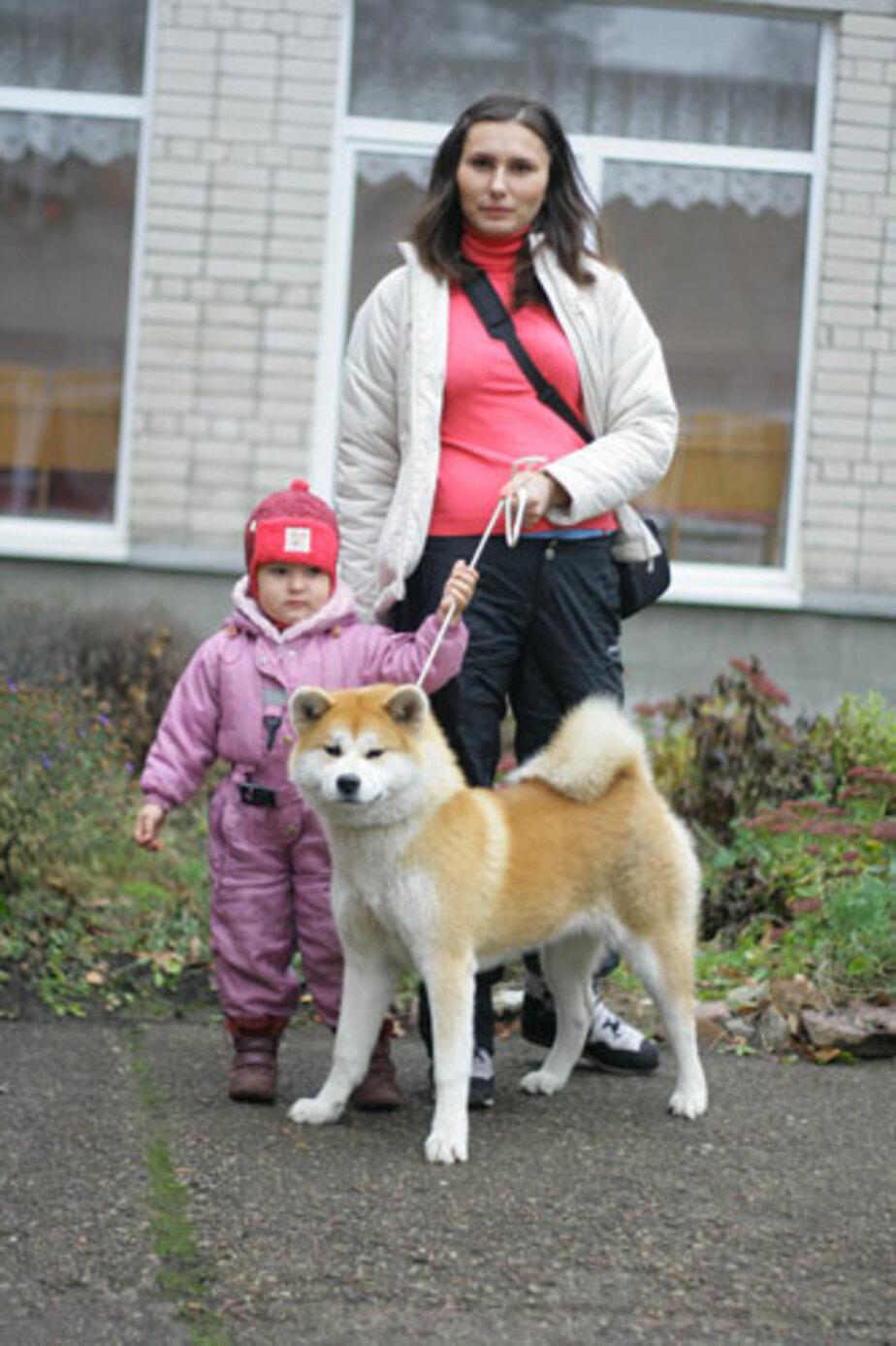 В Калининграде появилась одна из самых дорогих собак - Новости Калининграда