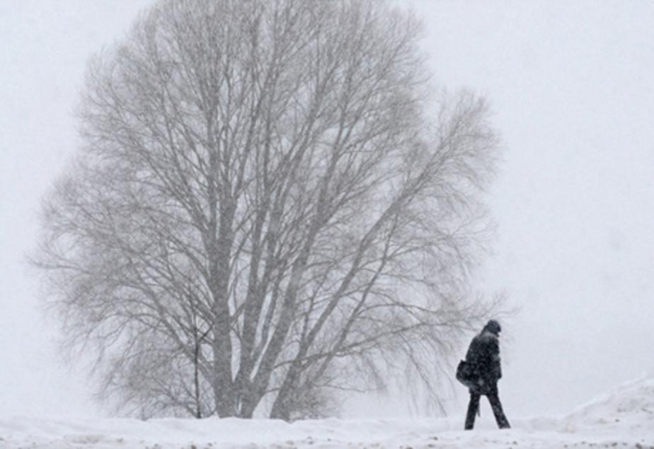 В Калининграде ожидаются сильный ветер и метель - Новости Калининграда