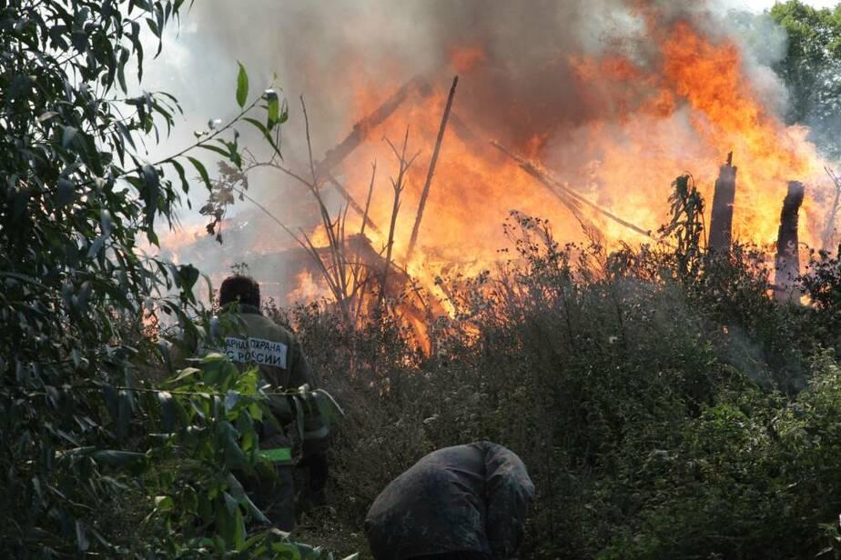 В Янтарном из-за детской шалости сгорели сараи - Новости Калининграда