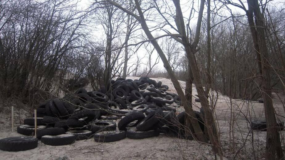 На Куршской косе образовалась большая свалка старых автопокрышек - Новости Калининграда