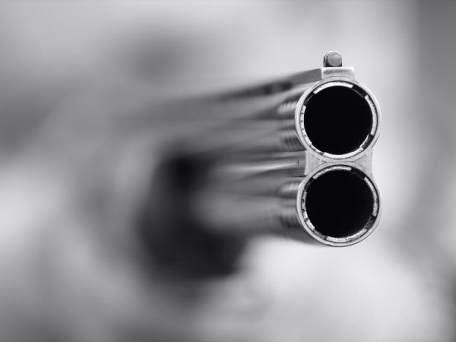Социолог- Борьбу с коррупцией в области можно сравнить со стрельбой по воробьям - Новости Калининграда
