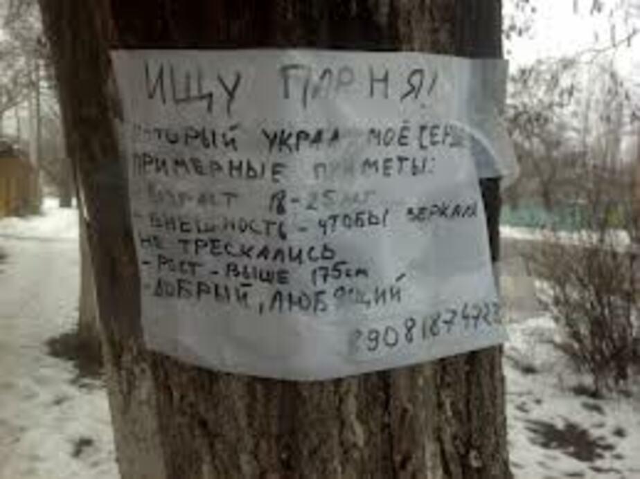 В Калининграде за три месяца рекламой испортили 195 деревьев - Новости Калининграда