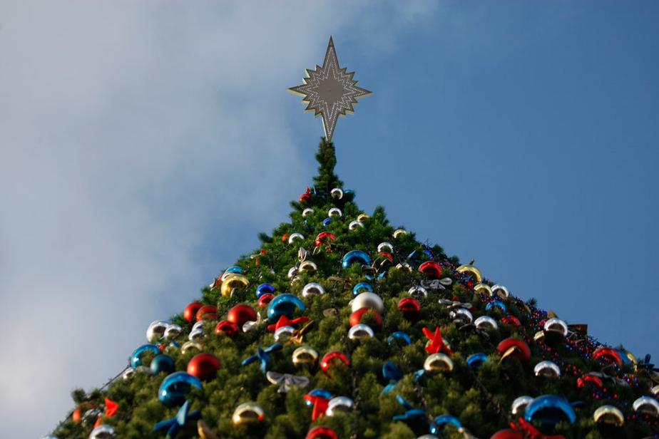 Новогодние елки в Калининграде уберут в среду - Новости Калининграда