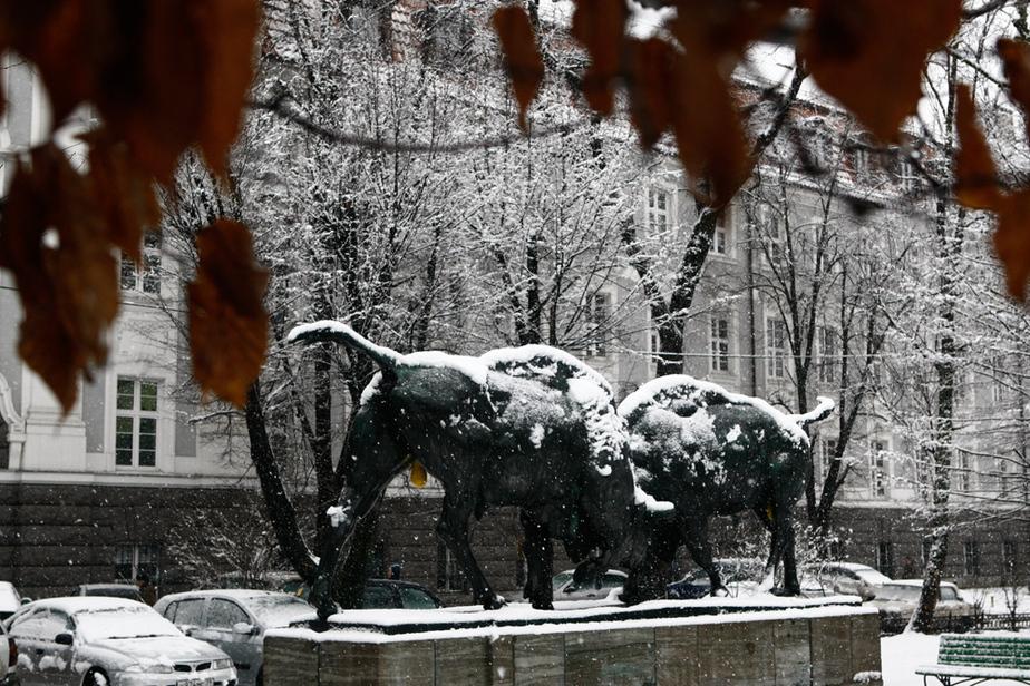 Гидрометцентр- В Калининграде температура опустилась на 12- ниже нормы - Новости Калининграда