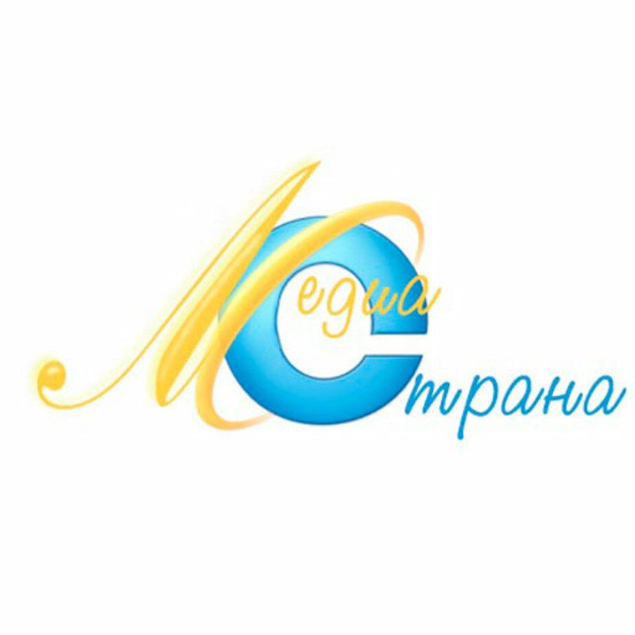 В «Медиастране» участвуют пятьдесят школ со всей области - Новости Калининграда