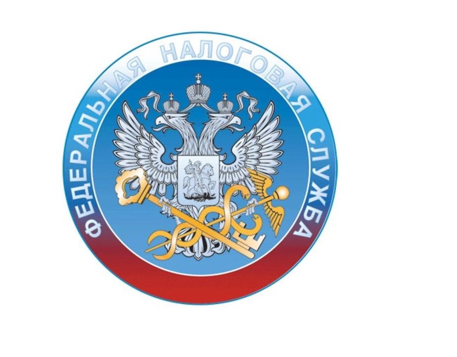 Подведены итоги онлайн конференции с УФНС Калининградской области - Новости Калининграда