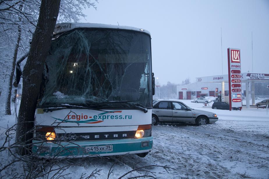 Рейсовый автобус Калининград-Балтийск врезался в дерево - Новости Калининграда