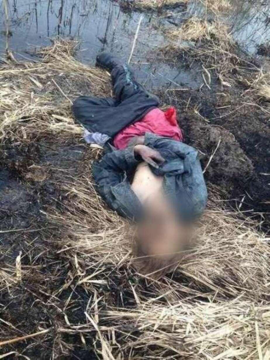 На болоте обнаружили труп пропавшего без вести мужчины - Новости Калининграда