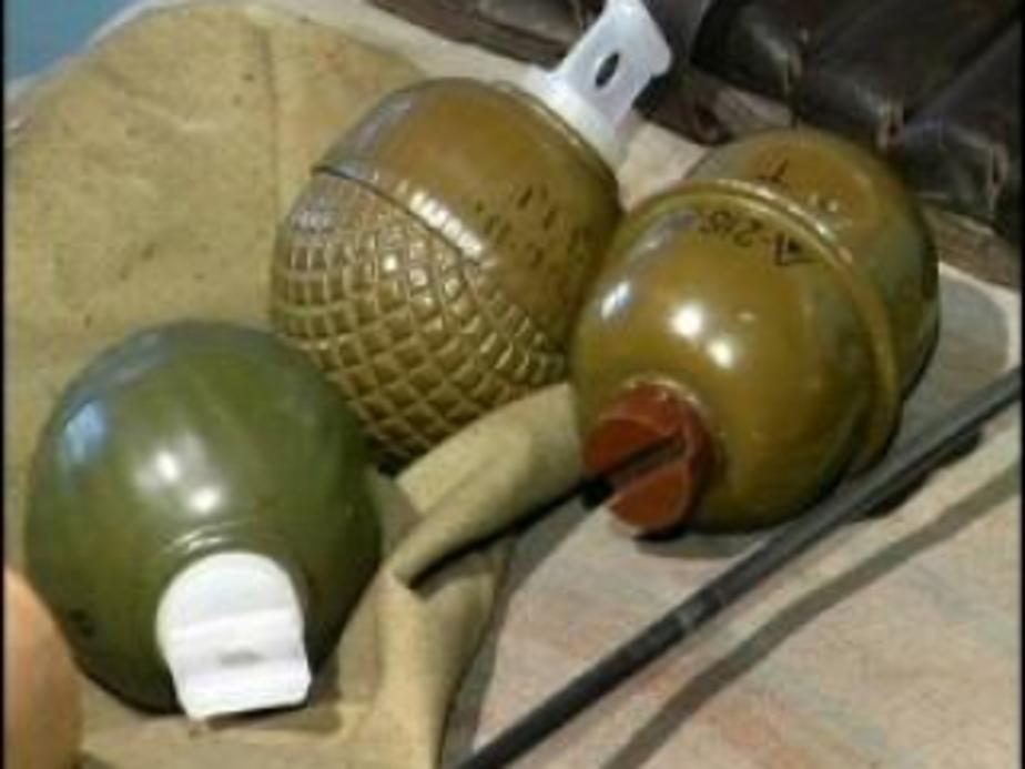 У жителя Озерского района полиция изъяла боевые гранаты - Новости Калининграда