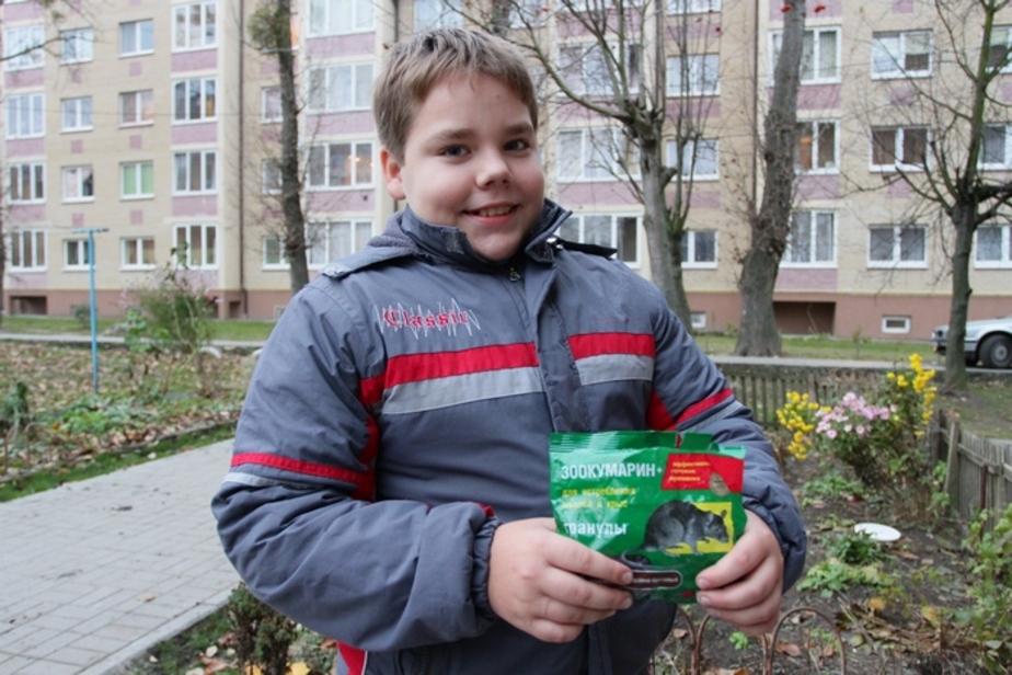 В Чкаловске 11-летнему школьнику в магазине продали отраву - Новости Калининграда